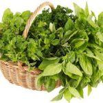 فواید سبزی خوردن چیست ؟